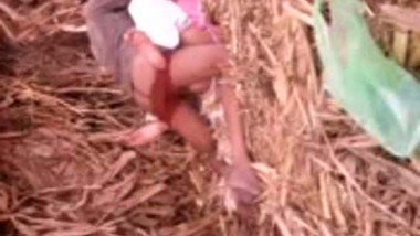 Village girl outdoor fucked by lover in sugarcane field